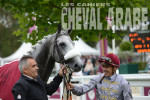 Prix Dragon-3740 - Chantilly 2016